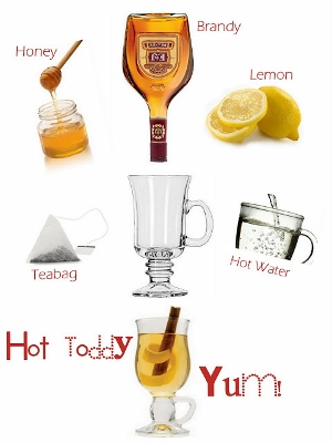 National Hot Toddy Day (300x400)