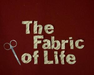 The Fabric of Life